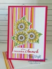 Celerate-Sunflowers-5