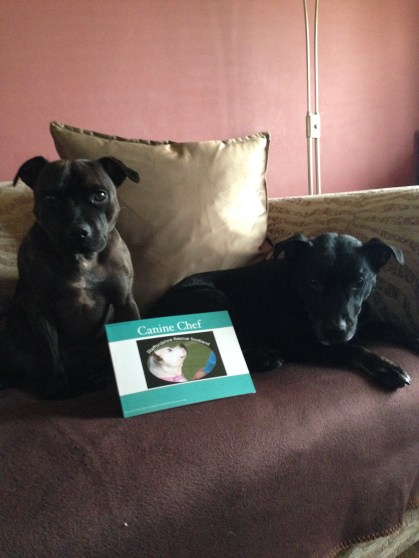 Coal & Tess with doggy cookbook