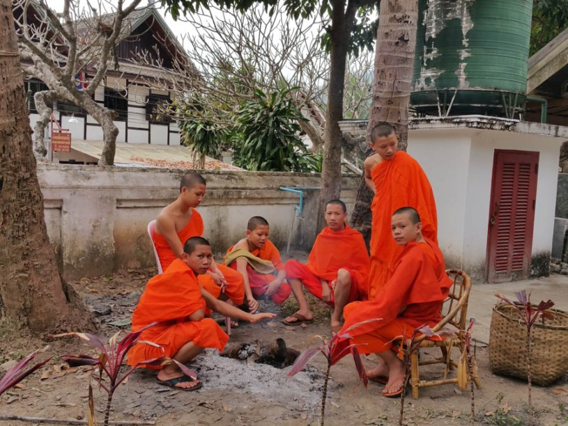 Young monks in the garden of the Wat Xieng Thong