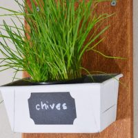 DIY recycled planter - don't throw rusty loaf tins away!