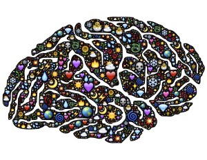 brain, colorful
