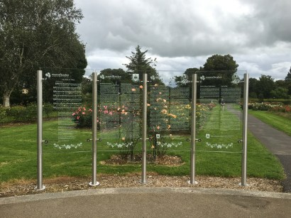 The glass Rose Wall of Honour with the Song 'The Rose of Tralee' and an information text about the 'Rose Garden and Sculpture' and the 'History of the Rose of Tralee Festival'