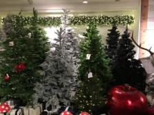 Do you still need a Christmas Tree?