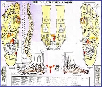 Vico Massagista, São José SC, Reflexologia Ventosaterapia Shiatsu Do-In Seitai Tuiná Acupuntura Quiropraxia Massagem Terapêutica Chinesa Massoterapia - 1a