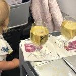 Meine Flüge 2020 - my flight plans 2020