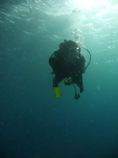 Chiara-Cove-Second-Dive-0