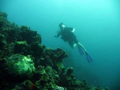 diving-at-kalki-12