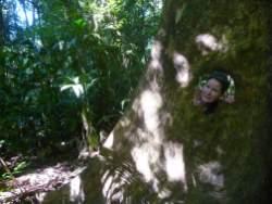 jungle-in-suriname-138
