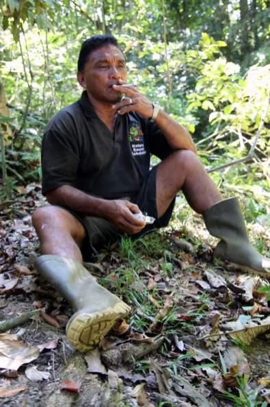 jungle-in-suriname-152