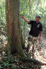 jungle-in-suriname-42