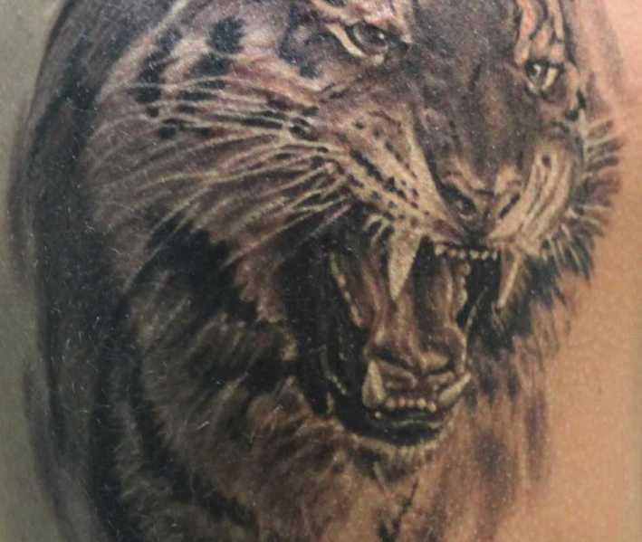 какое значение наколки змея с черепом татуировки черепа значение