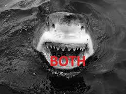 Jaws both