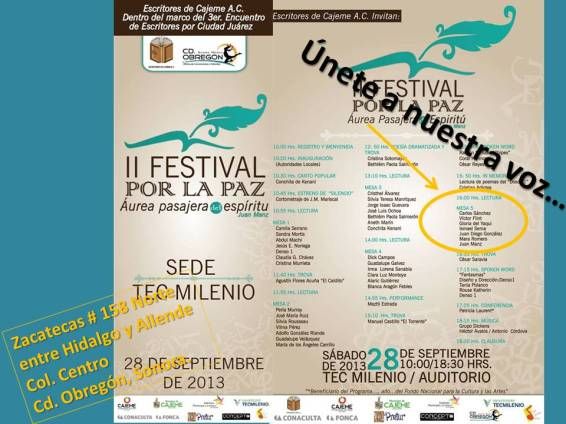 Mesa 5 del II Festival por la Paz 2013.