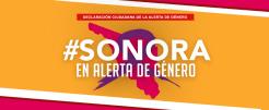 alerta-genero-dic-2016
