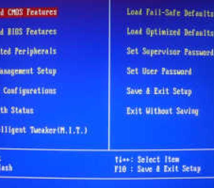 Напечатанные нейроны