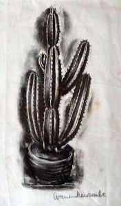 Cactus in a Pot by Warren Newcombe