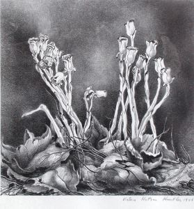 Indian Pipes by Victoria Hutson Huntley