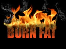 foods that burn fat fast
