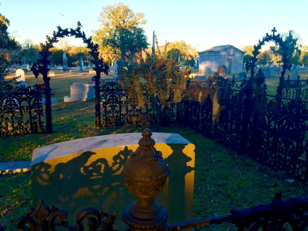 Sunset at Hillcrest Cemetery in Savannah. Nevermore visits with a resident Mockingbird.