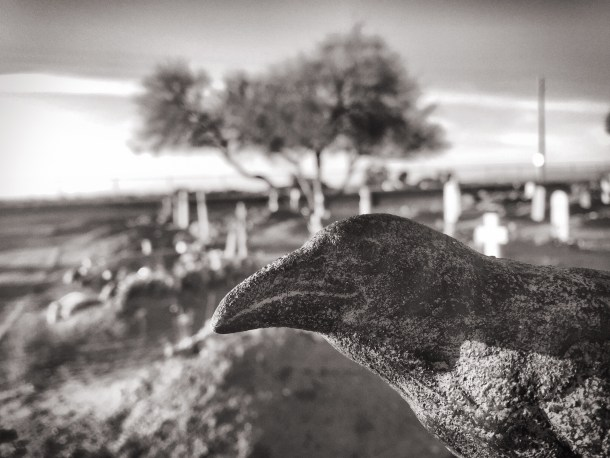Nevermore at Lehi Cemetery