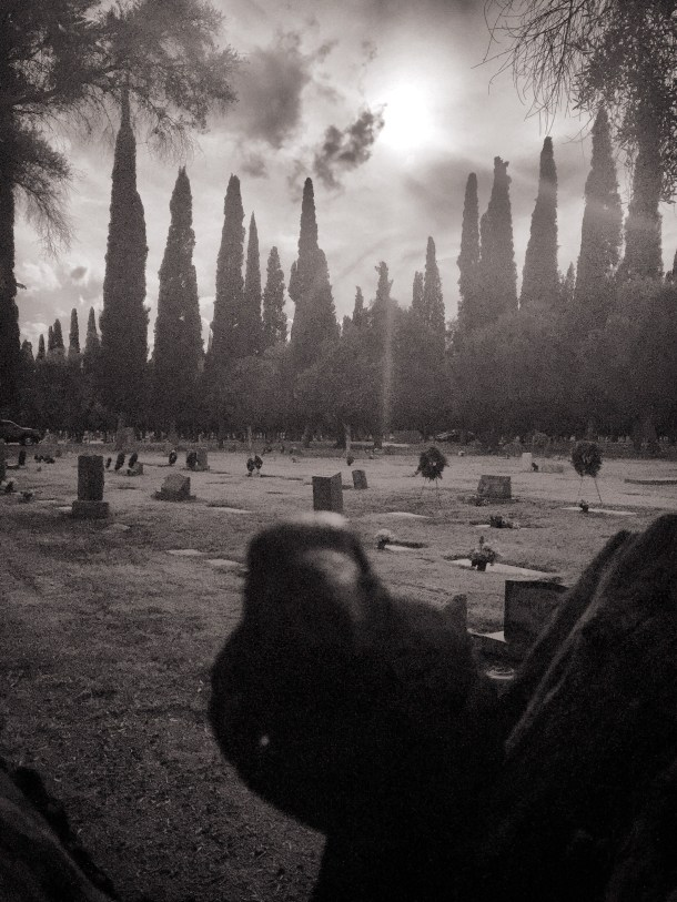Nevermore at Mesa Cemetery in Mesa, Arizona
