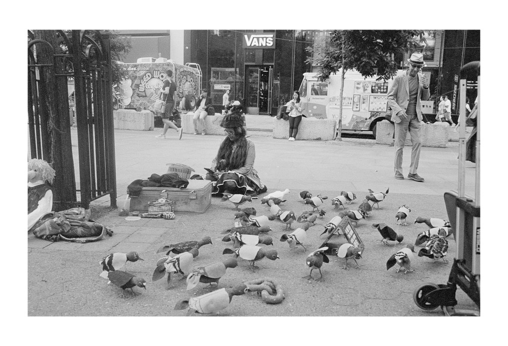 Pigeonry
