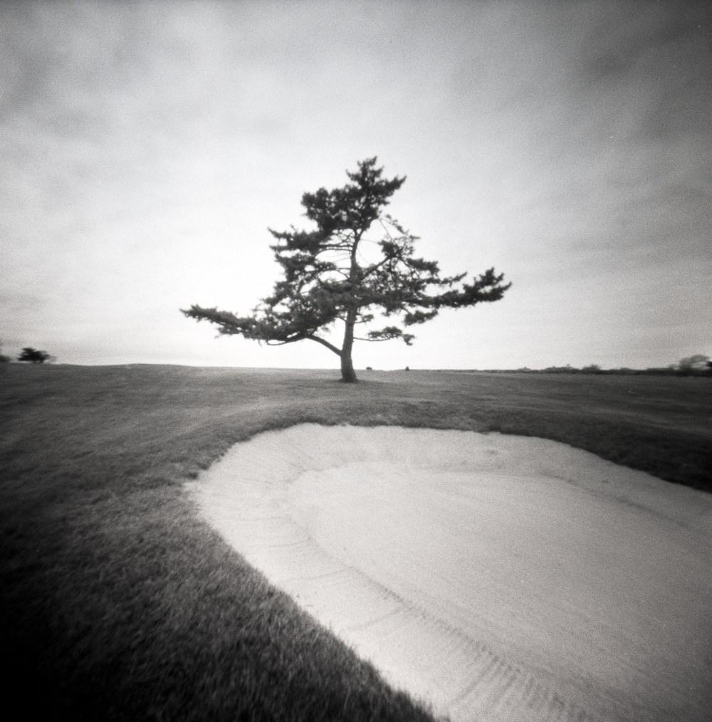 20190519-Lone Tree