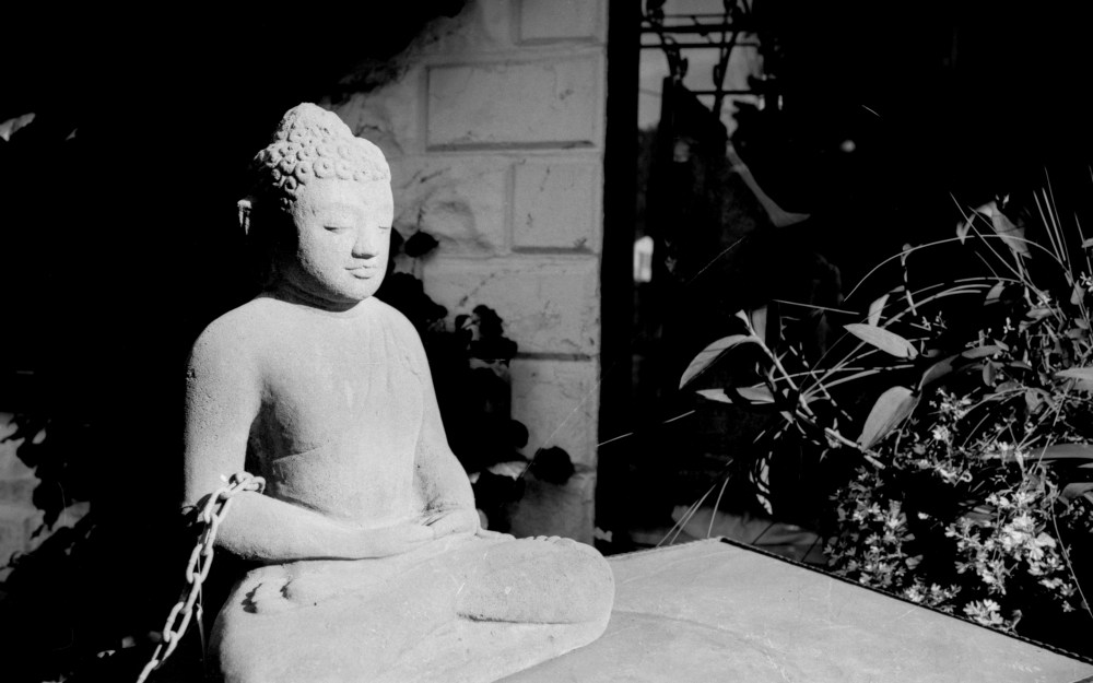 Buddha in Chains