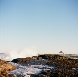 Wind and Waves and Birds-4