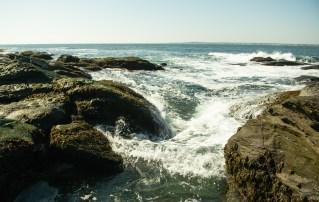 Slippery Shore