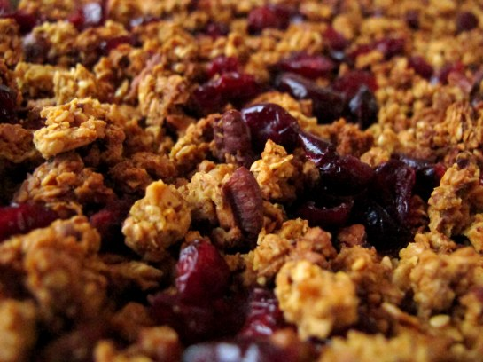 Pumpkin Pie Granola Close Up