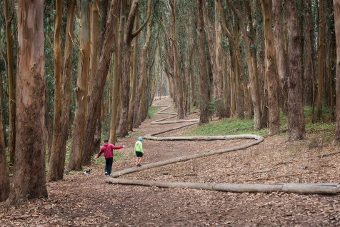 lovers_lane_presidio