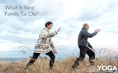 What is Yang Family Tai Chi?