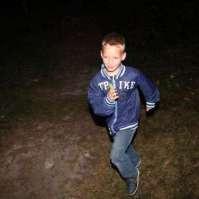 Jay rent door het donkere bos