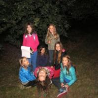 In het donkere bos