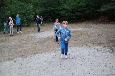 Avondspel in het bos