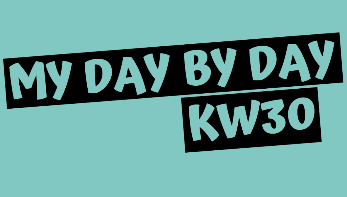 Artikelbild f+r My Day By Day (KW 30)