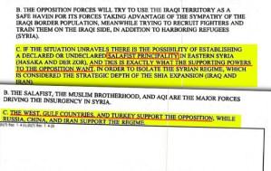 Defense Intelligence Agency Leaked Report