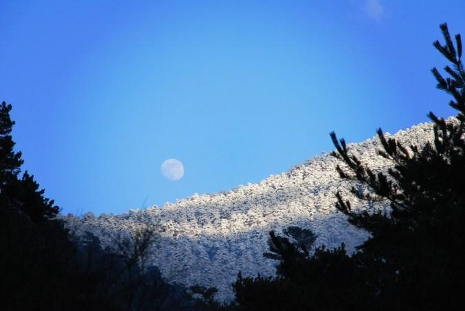 Atardecer de luz de luna | Evening moonlight