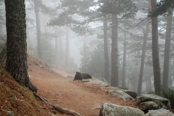 Camino Schmid y La Granja 01