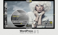 WordPress Theme of the Week #1