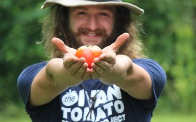 Ivan Tomato Rescue Project Indiegogo Campaign
