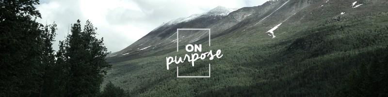 On Purpose Sermon Series