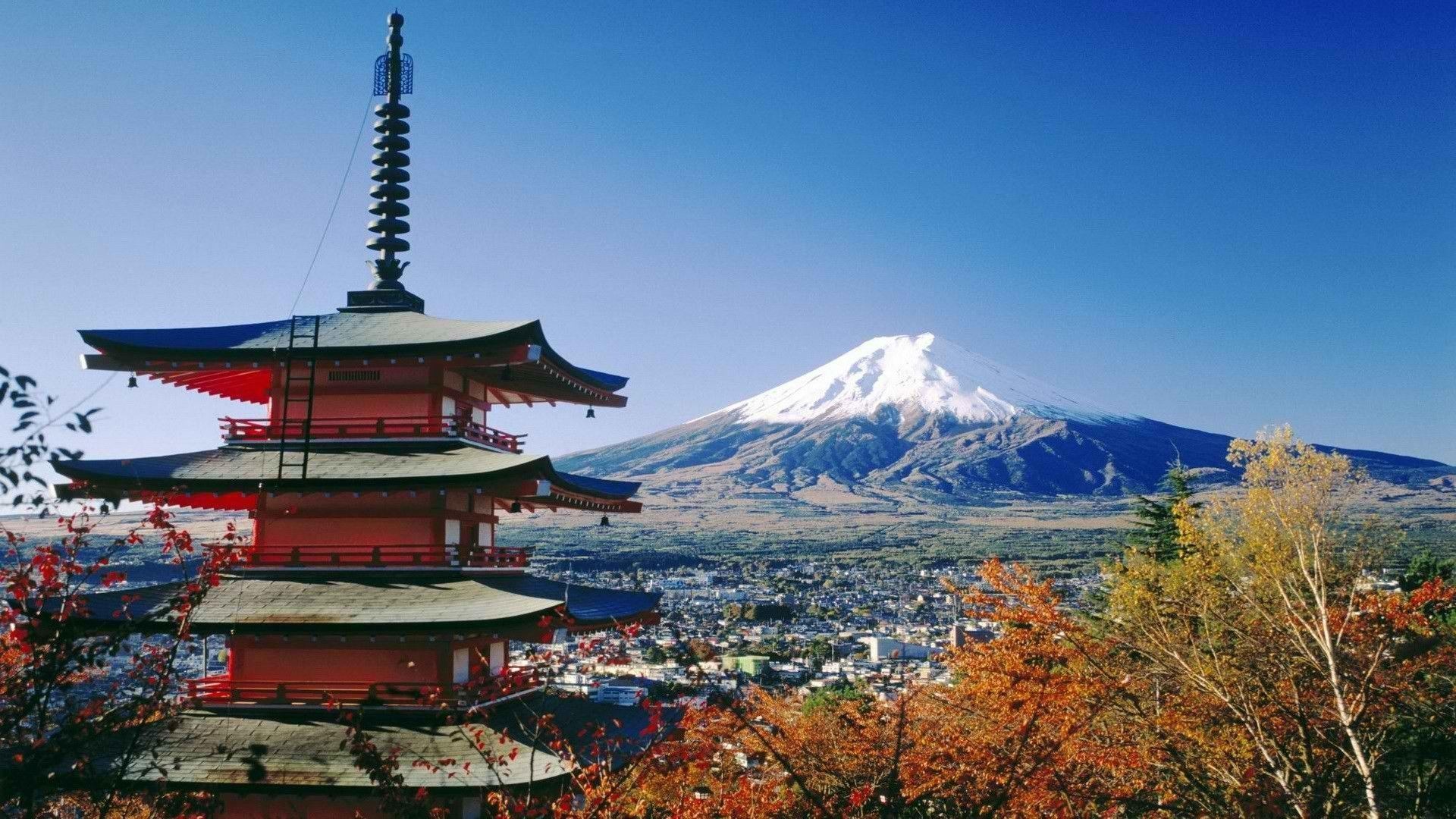 Things You Need to Know Before Studying In Japan