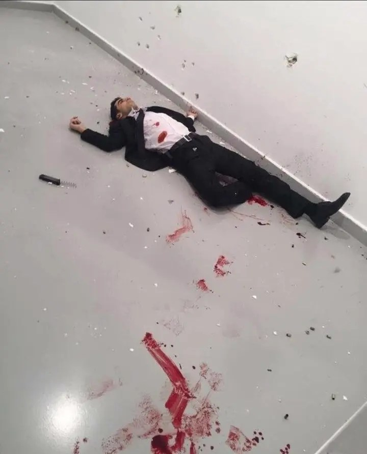 All you need to know on the gunman who killed the Russian ambassador