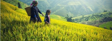 Agricultura Familiar: ¿Quien alimenta al mundo?