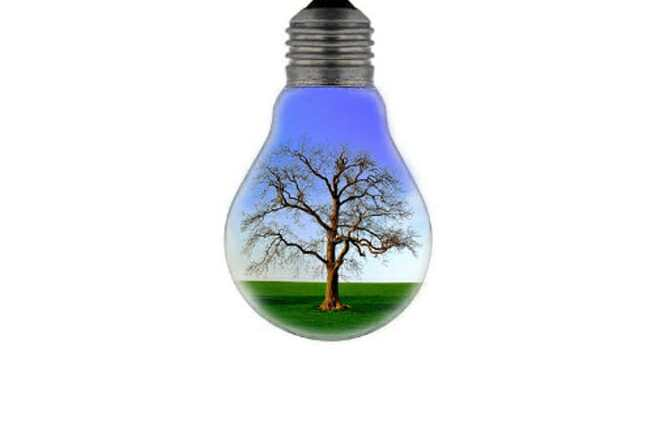 Ciencia y Conciencia con el Medio Ambiente