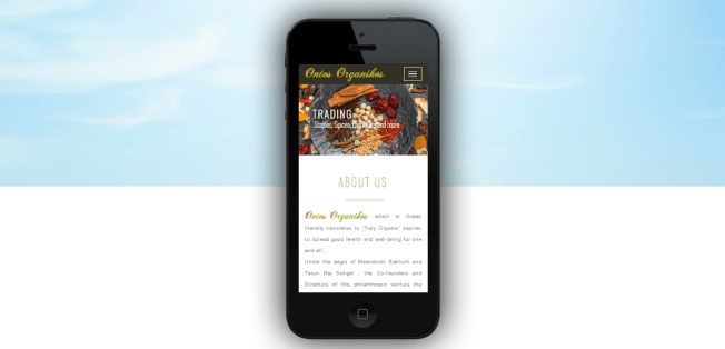 Mobile- Apple iPhone 5-responsive-website-design-vidaan