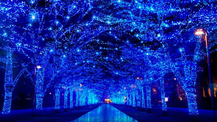 japan-best-winter-illuminations_Ano-novo-japão_Cultura-japonesa_Vida-de-Tsuge_VDT