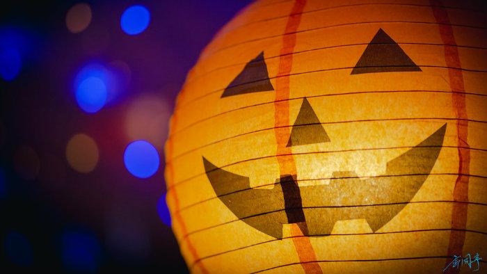 abobora_halloween-no-japao_viagem-pro-japao_vida-de-tsuge_vdt
